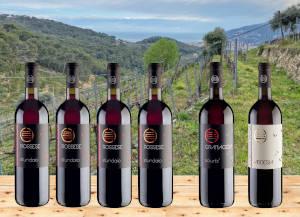 Vini rossi Cascina Praiè in offerta