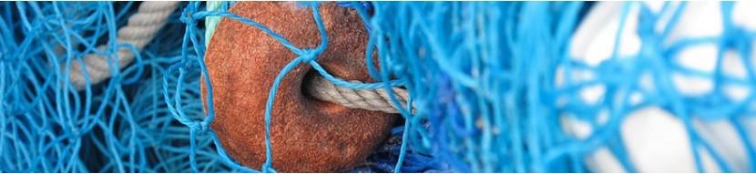 Prodotti di pesce ditta Siccardi Giobatta di Varigotti
