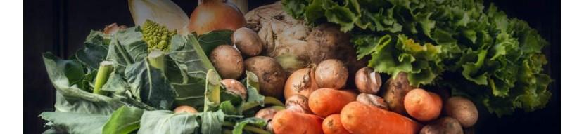 Vendita online di verdura in collaborazione con Ortofrutticola di Albenga